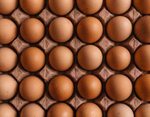Identical eggs
